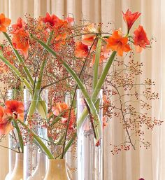 This is the display we were about to remove, having been in situ for one week, hence the slightly cloudy water and translucent quality to some of the Amaryllis. This is a flower combo I never tire of doing in the Autumn. Art Floral, Floral Design, Hotel Flowers, Hotel Lobby Design, Amarillis, Corporate Flowers, Modern Flower Arrangements, Hotel Decor, Decoration