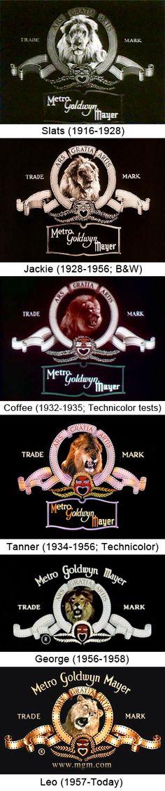 The Evolution of the Metro-Goldwyn-Mayer Lion