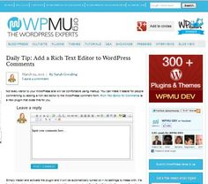 Add a Rich Text Editor to WordPress Comments