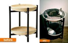 IKEA ist sehr populär und meistens auch sehr preiswert. Insbesondere bestimmte Möbel sind recht günstig! Mit diesen IKEA Hacks kann man selber preisgünstige Möbel in ein schönes Möbelstück für die Katze zaubern. Schau Dir diese 12 DIY Ideen an und...