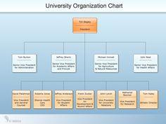 University School Organizational Chart