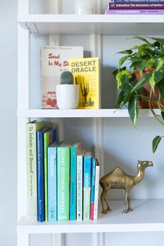 The secret to the perfect #shelfie Instagram (AKA: How to perfectly organize your bookshelf)