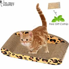 Cat Corrugated Scratch Board Couch Style Scratcher Pad Bed Mat Kitten Claws Care Interactive Toy for Pet Cat Training