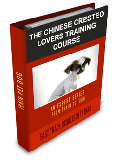 Chinese Crested Training: Learn All About Training Chinese Cresteds & Taking Care of Them