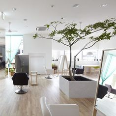 Japanese architects Ninkipen! planted a tree at the centre of this hair salon in Kadoma and surrounded it with mirrored A-frames.