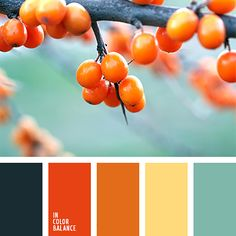 A bright palette that brings a perfect summer mood through a combination of shades of orange and yellow in combination with mint green. Perfect for a child. Orange Color Palettes, Blue Color Schemes, Color Combos, Pantone Verde, Tertiary Color, Color Palate, Design Seeds, Color Stories, Color Swatches