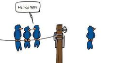 The little bird has wifi, do you?