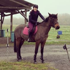 Training a Young Horse is Hard! Why Lowering Your Expectations is Actually a Good Thing. - In Due Horse Don T Go, Look After Yourself, Equestrian, Something To Do, Thats Not My, Training, Horses, Good Things, Shit Happens