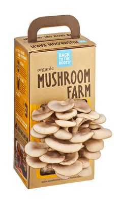 Grow gourmet, organic oyster mushrooms anywhere and right out of the box in just 10 days! Just open the box, mist with water, and harvest 10 days later. The Mushroom Farm lasts for months in the box unopened, making a great gift item for kids, families, foodies & chefs!