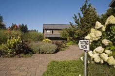 WillaKenzie Estate (Oregon) Oregon Wine Country, Tasting Room, Outdoor Decor, Home Decor, Homemade Home Decor, Decoration Home, Interior Decorating