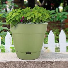 Awesome Balcony Planters Home Depot