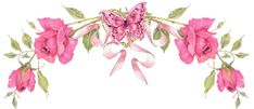 divider+hot+pink+butterfly+and+roses.gif