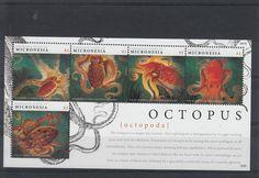 Micronesia Federated States 2012 MNH Octopus 5V Sheetlet Marine Longarm Giant | eBay