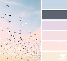 Color Flock | Design Seeds