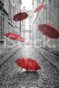 Vagina umbrella black and white