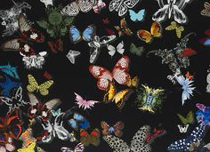 Butterfly Parade Fabric from Designers Guild Carnets Andalous Fabrics Collection. A stunning vibrant fabric designed by Christian Lacroix. A delightful collection of butterflies in a range of different styles printed with a shadow creating depth in multic Fabric Butterfly, Butterfly Design, Designers Guild, Fabric Wallpaper, Pattern Wallpaper, Bedroom Wallpaper, Dark Wallpaper, Textile Patterns, Print Patterns