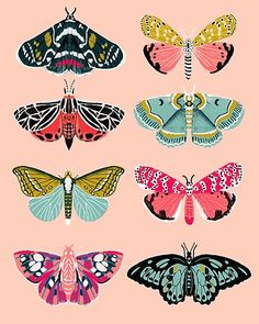 Lepidoptery No. 1 by Andrea Lauren Art Print by andrealaurendesign - Lepidoptery No. 1 by Andrea Lauren Art Print by Andrea Lauren Design Art Papillon, Illustrations, Illustration Art, Butterfly Illustration, Posca Art, Insect Art, Insect Crafts, Guache, Butterfly Art