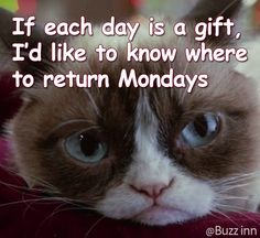 No returns, no refunds - deal with it! I Hate Mondays, Sayings, Lyrics, Quotations, Qoutes, Proverbs