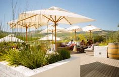tasting_01 Tasting Room, Cape Town, Farms, South Africa, Vineyard, African, Patio, Wine, Outdoor Decor