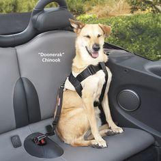 Adjustable Seat Belt Restraint - Dog Beds, Gates, Crates, Collars, Toys, Dog Clothing & Gifts