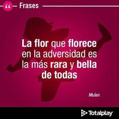 #Frase #Quotes #Mulan