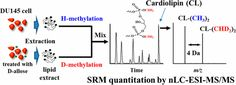 #AChem: Relative Quantification of Phospholipids Based on Isotope-Labeled Methylation by Nanoflow Ultrahigh Performance Liquid… #MassSpec