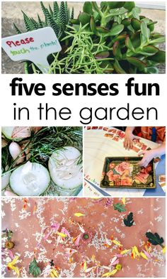 garden theme images   craft activities