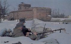 German World War 2 Colour Volksturm Soldiers Manning MG 34