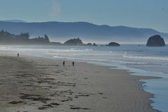 Pebble Beach Crescent City Where To Go Fall In Love With