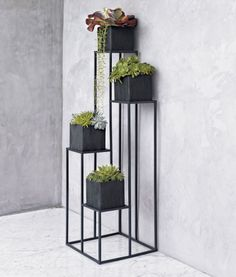 Quadrant Plant Stand with Four Planters in Garden, Patio Crate and Barrel Modern Plant Stand, Diy Plant Stand, Plant Stands, Tv Stands, Indoor Garden, Indoor Plants, Home And Garden, Balcony Plants, House Plants