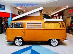 Vw T, Volkswagen, Beetles, Camper Van, Van Life, Bobber, A5, Jeep, Wheels