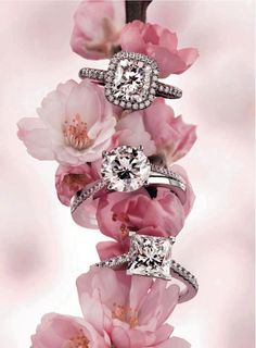 Diamonds!... and cherry blossoms. This is one of my all time favourite advertising campaigns by De Beers Jewellery. Love Pip x