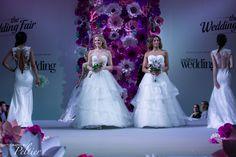 Excel wedding Fair