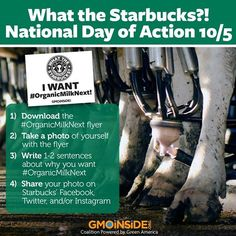 "Stand with us on our National Day of Action for the ""What the Starbucks?!"" campaign on October 5th– and ask Starbucks for #OrganicMilkNext! Get more information and download your flyer here: http://gmoinside.org/starbucks-national-day-action-organicmilknext #GMOdairy #GMOs #CAFOs #righttoknow #organic #goorganic #cleaneats #takeaction"