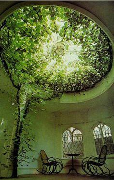 Awesome Indoor Tree | Fun Elf   <3 www.BillionDollarBaby.biz ~ http://www.pinterest.com/keymail22