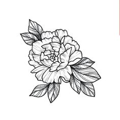 Your place to buy and sell all things handmade - Monochrome Large Flower Temporary Tattoo / Minimalist Tattoo / Black Flower Fake Tattoo / Wildflower - Tattoo Flash, Botanisches Tattoo, Shape Tattoo, Drawing Tattoos, Watercolor Tattoos, Tiny Tattoo, Tattoo Sketches, Carnation Flower Tattoo, Flower Wrist Tattoos