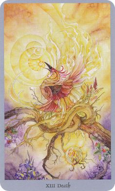 Shadowscapes-Tarot- this is my favorite representation of the Death Card, a Phoenix