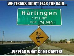 The mosquitos along the coast in Texas will legit carry you off. Funny Signs, Funny Jokes, Hilarious, Waltz Across Texas, Shes Like Texas, Texas Humor, Texas Weather, Only In Texas, Laughter The Best Medicine
