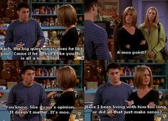 JOEY – Rach, the big question is, does he like you? Cause if he doesn't like you, this is all a moo point.   RACH – A moo point?   JOEY – You know, like a cow's opinion. It doesn't matter. It's moo.   RACH – Have i been living with him too long or did that all just make sense?