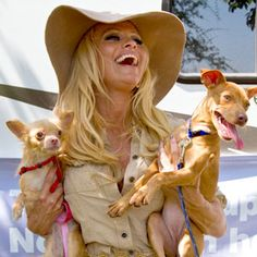 Pamela Anderson, the honorary chairman of the People for the Ethical Treatment of Animals, was in New Orleans (2010) to help relocate about 50 dogs from Louisiana to Virginia. Shelters in the area are more crowded since people lost jobs due to the BP oil spill.  Pamela adopted two of her own in the process.