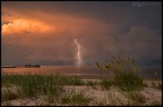 Photography by Alex North - Mississippi Gulf Coast
