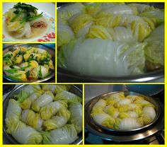 Cabbage Rolls http://www.cost278.org/cabbage-soup-diet/