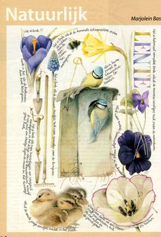 Marjolein Bastin, my collection, nature