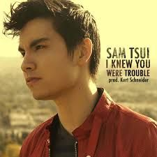 Image result for sam tsui