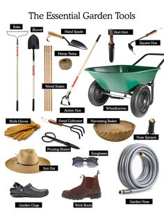 Essential Garden Tools for the Home Gardener | Fresh Exchange
