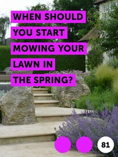 Learn When Should You Start Mowing Your Lawn in the Spring? Beautiful Beds, Lawn Maintenance, Trees And Shrubs, Home And Garden, Success, Gardening, Canning, Shape, Spring