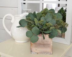 15x Eucalyptus Huis : Best eucalyptus i see images decorating ideas home art flowers
