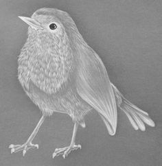 Purely Parchment Craft - Christmas - Robin Pattern