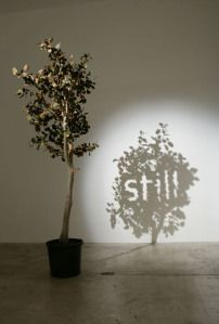 Wonderful shadow art created by talented Belgian artist Fred Eerdekens. Strategically placed objects cast shadows that form words and images. Shadow Photography, Art Photography, Kumi Yamashita, Instalation Art, Shadow Art, Shadow Play, Art Sculpture, Art Moderne, Land Art