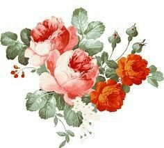 Find more awesome flores images on PicsArt. Rose Vintage, Vintage Flowers, Vintage Floral, Vintage Birds, Botanical Flowers, Botanical Art, China Painting, No Photoshop, Flower Backgrounds